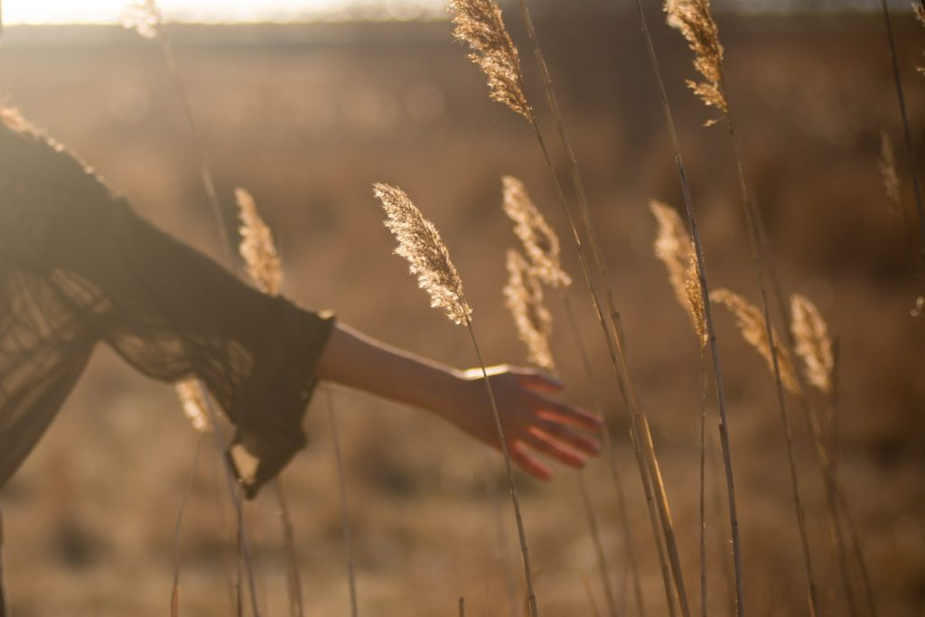 Woman walking through a sunny field and running her hand through the tall grass. Representing sex therapy for women.