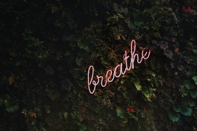 """Green plants with neon sign that says """"breathe"""""""